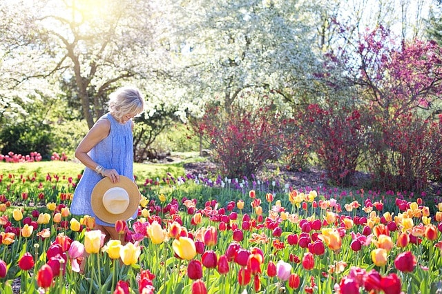 woman-in-a-tulip-garden